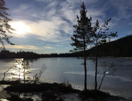 Höga Kusten Winter Classic 15/2 – 19/2 2017